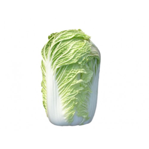 14-BIG CABBAGE BIG (大白菜)